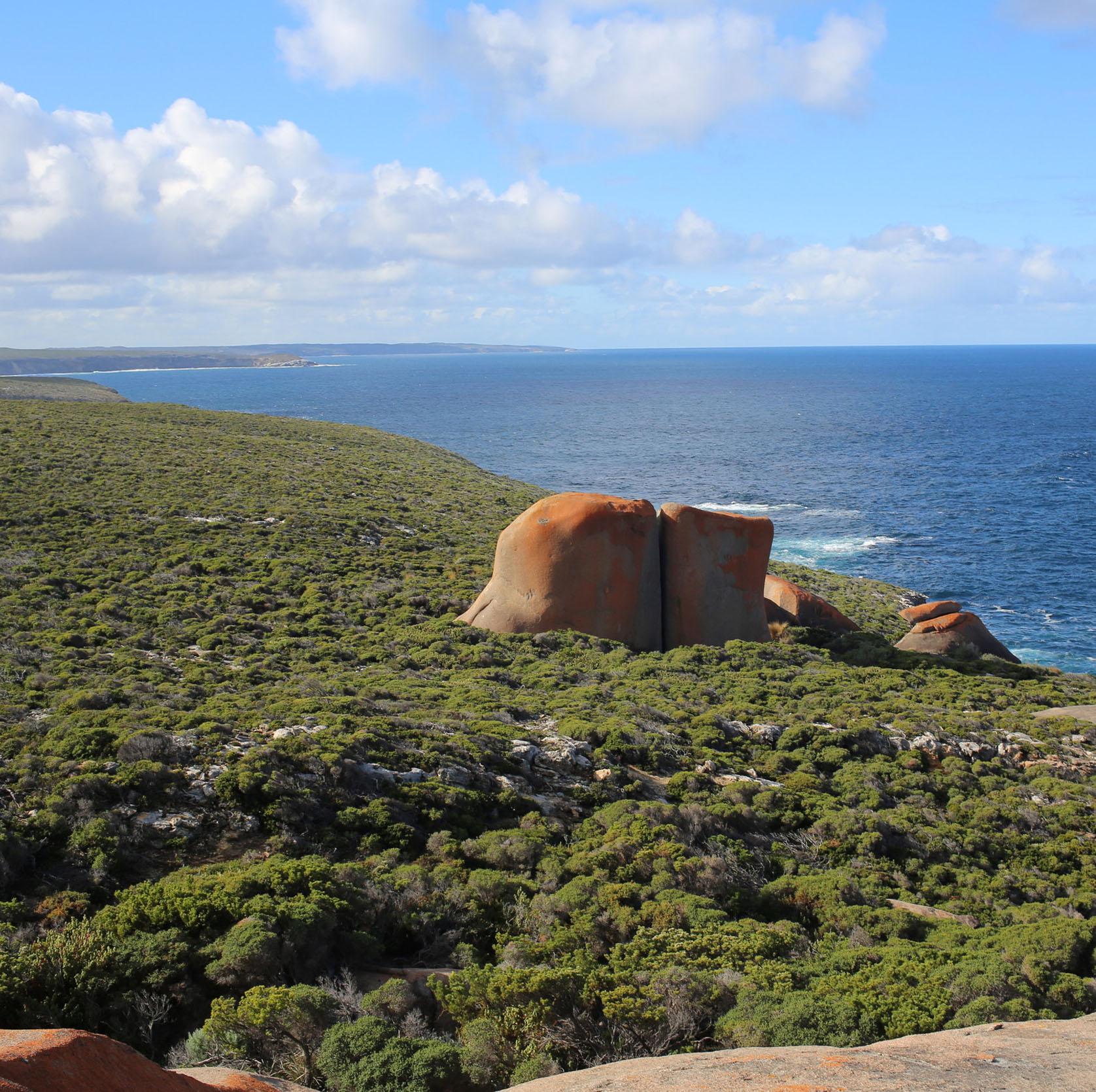 Remarkable Rocks en kangaroo Island - Viaje a el Sur de Australia